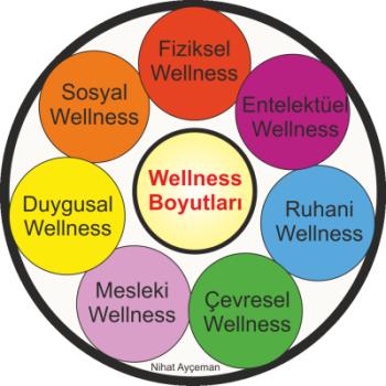 wellness boyutları